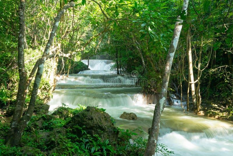 Tropische bos en waterdaling royalty-vrije stock afbeelding