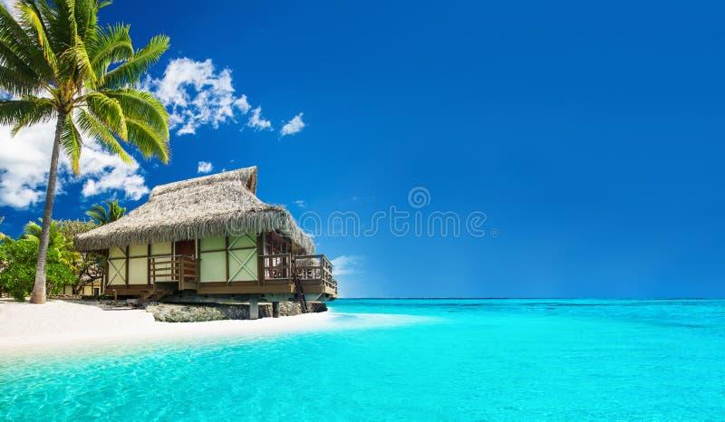 Tropische bungallow op het verbazende strand met palm stock afbeeldingen
