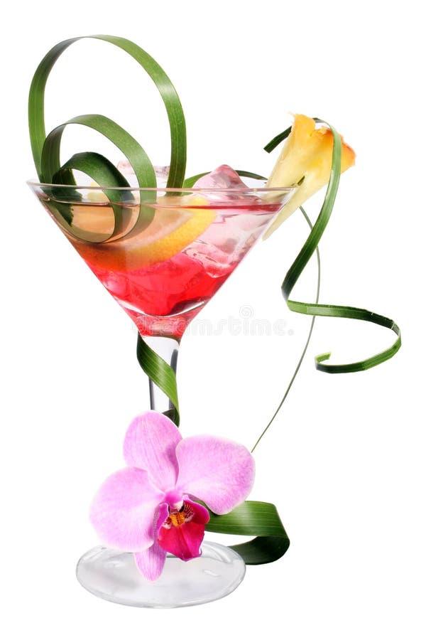 Tropische Cocktail stock afbeeldingen