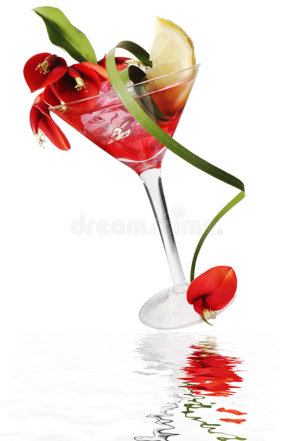 Tropische Cocktail royalty-vrije stock afbeeldingen