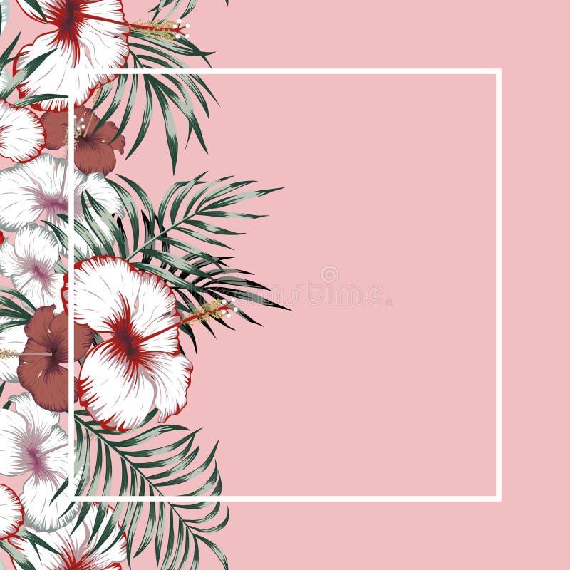 Tropische de illustratie roze achtergrond van het bloemenkader stock illustratie