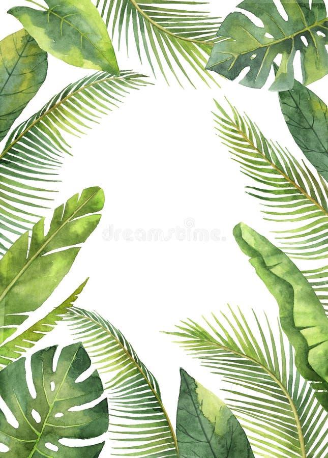 Tropische die bladeren en de takken van het waterverf de rechthoekige kader op witte achtergrond worden geïsoleerd stock illustratie