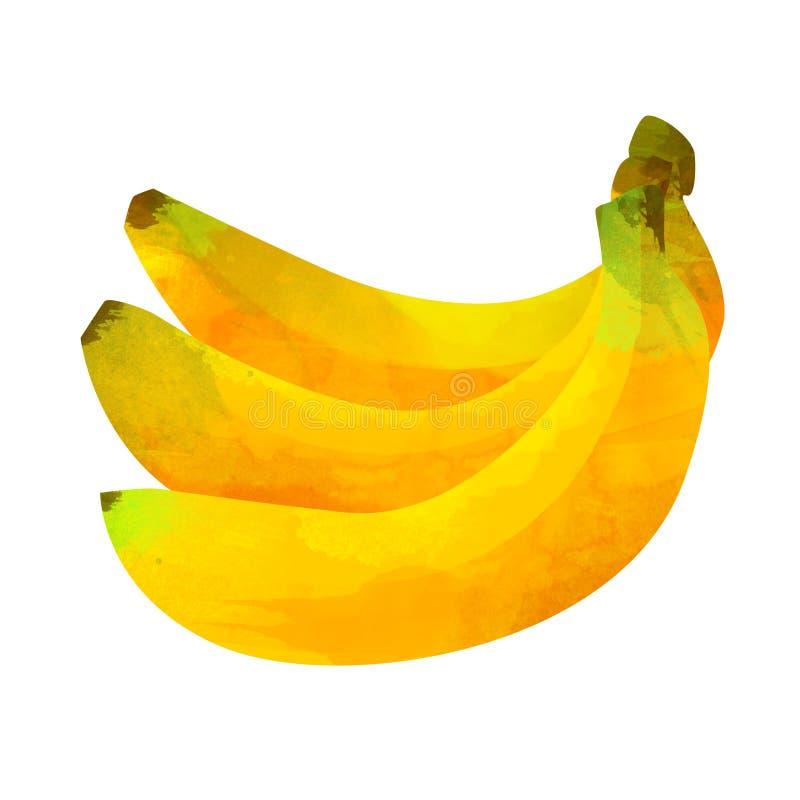 Tropische die fruitbanaan op witte achtergrond wordt geïsoleerd royalty-vrije stock foto's