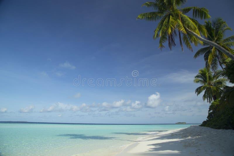 Tropische eiland en zandstrand exotische reis royalty-vrije stock afbeelding