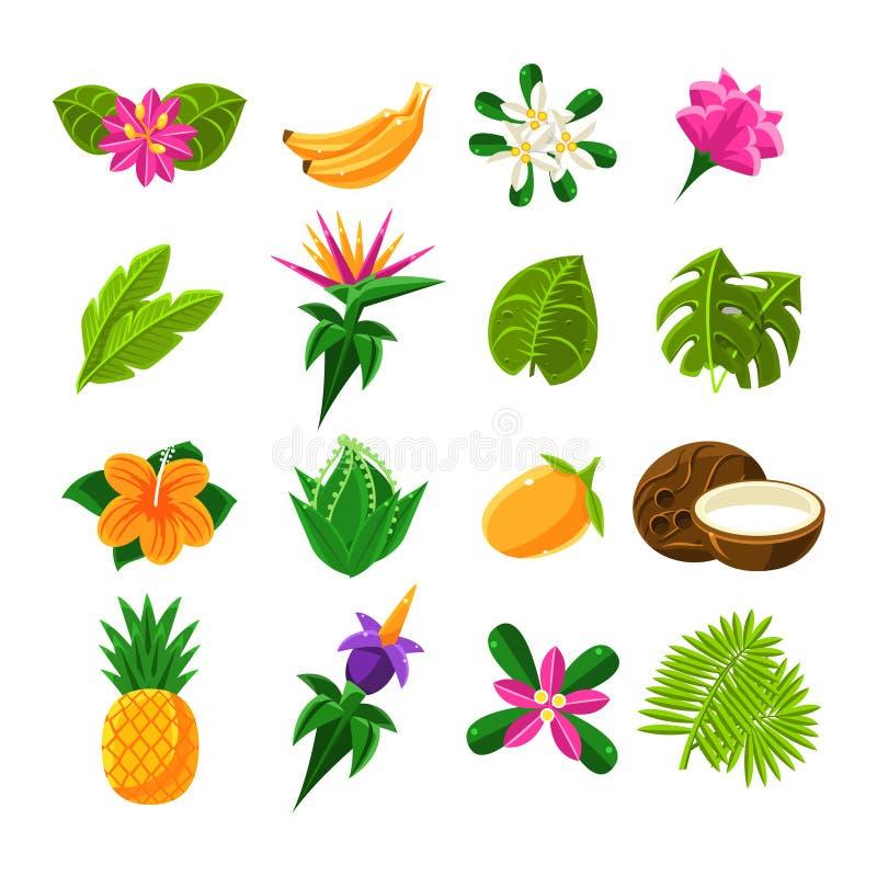 Tropische Exotische Vruchten en Flora Set Of Icons royalty-vrije illustratie