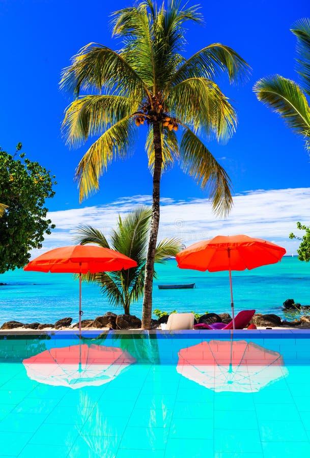 Tropische Ferien - Bar mit Türkisschwimmenpool- und -seeansicht M stockbild