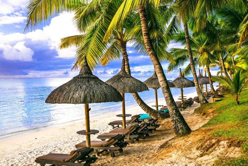 Tropische Ferien schöne Strandlandschaft mit Palmen und Strand stockbilder