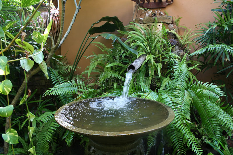 Tropische fontein stock afbeeldingen