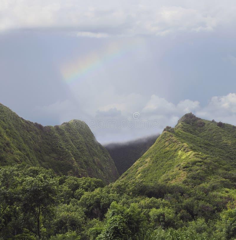 Tropische Forest Covered Mountains en Regenboog in Maui, Hawaï stock afbeeldingen