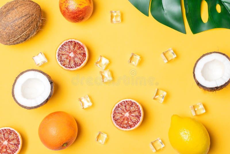 Tropische Früchte, Blutorangen, Kokosnuss, Zitrone, Eiswürfel, monstera Blatt stockbild