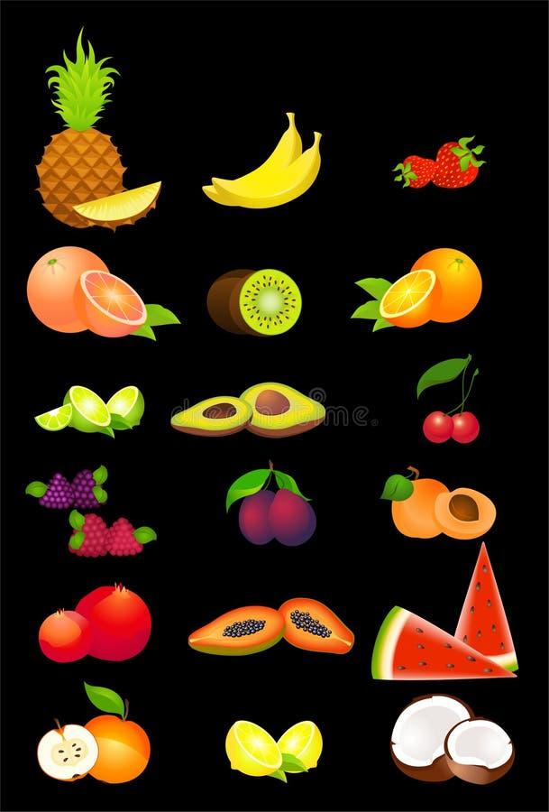 Tropische Frucht stock abbildung