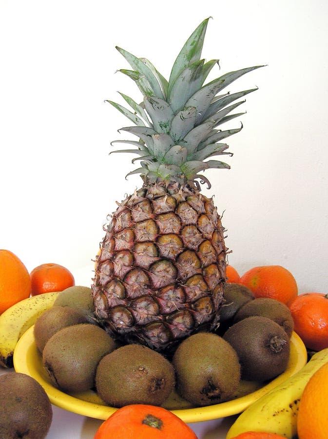 Tropische Frucht stockbild
