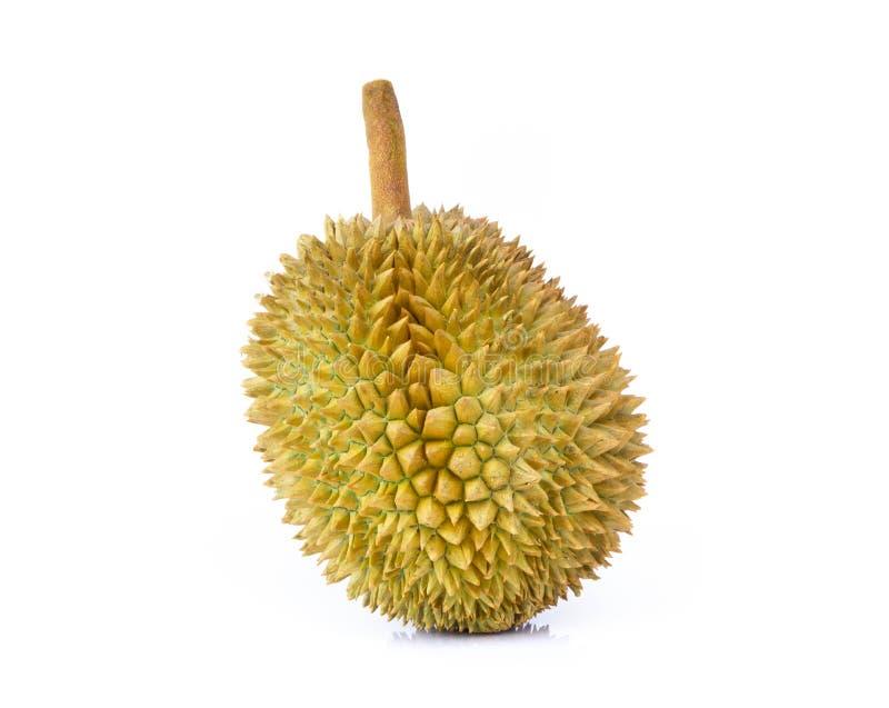 Tropische Frucht des Durian lokalisiert auf wei?em Hintergrund lizenzfreie stockfotografie