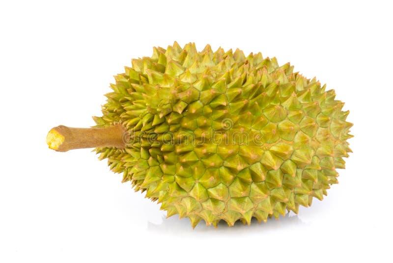 Tropische Frucht des Durian lokalisiert auf wei?em Hintergrund lizenzfreie stockfotos