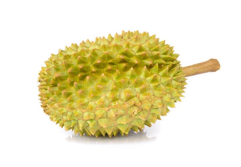 Tropische Frucht des Durian lokalisiert auf wei?em Hintergrund stockbilder