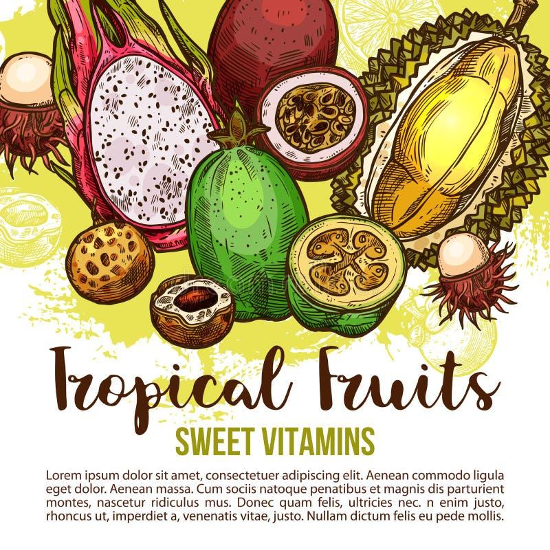 Tropische fruitaffiche van exotische Aziatische bessenschets stock illustratie