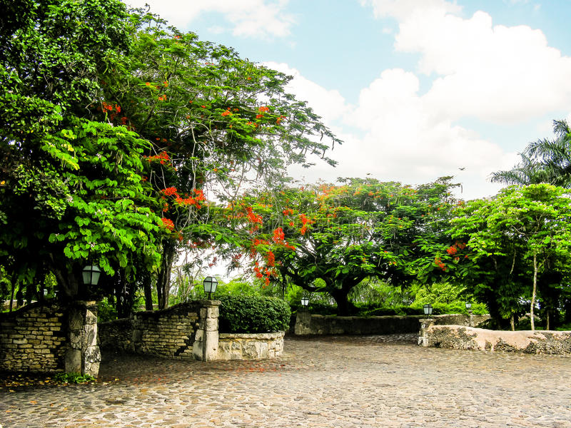 Tropische Gärten mit Steinen stockfoto