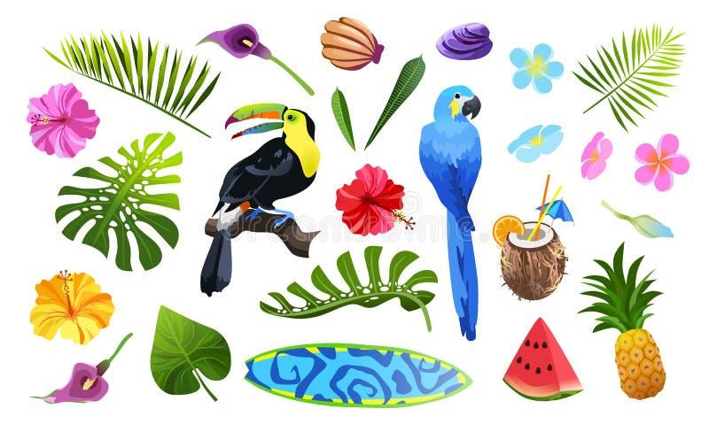 Tropische geplaatste voorwerpen royalty-vrije illustratie