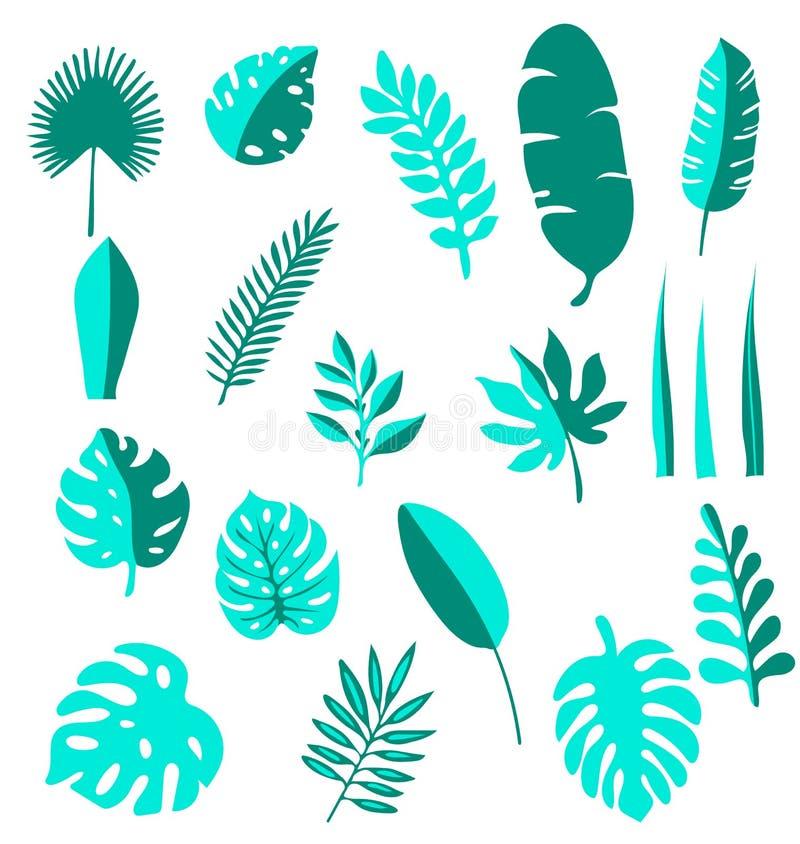 Tropische gezeichnete Ikonen des Blattvektors gesetzte Hand Palmblatt, Bananenblatt Dschungel-Bäume Botanische Blumenillustration lizenzfreie abbildung
