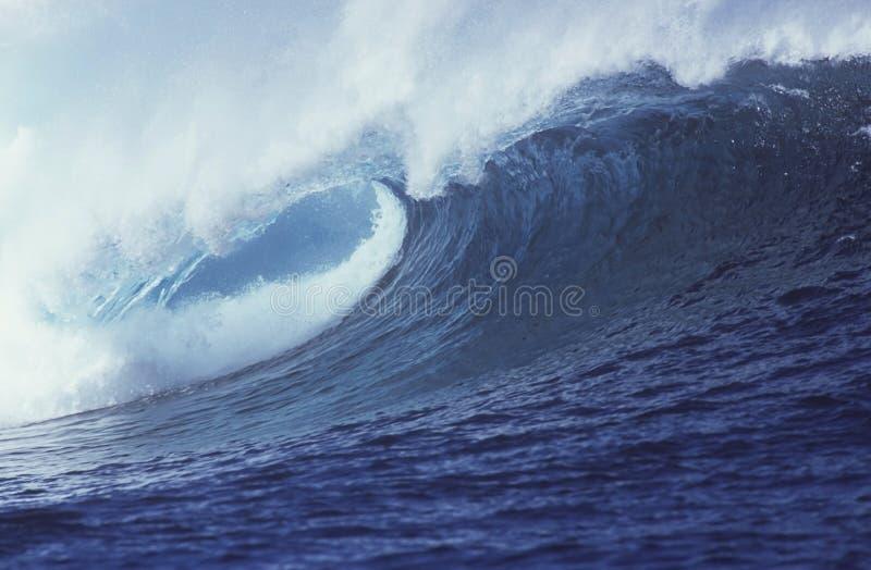Tropische Golf royalty-vrije stock afbeeldingen