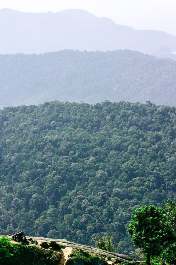 Tropische groene bergen met perspectiefmening, Langkawi-eiland stock foto's