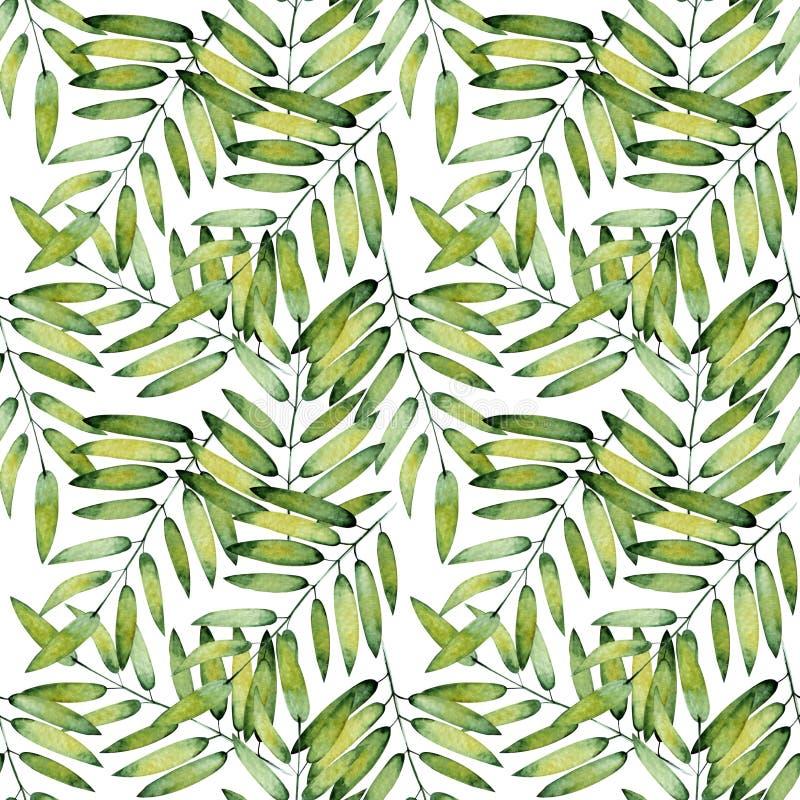 Tropische groene bladeren, met de hand geschilderd met waterverf De hand schilderde exotische groene takken stock illustratie