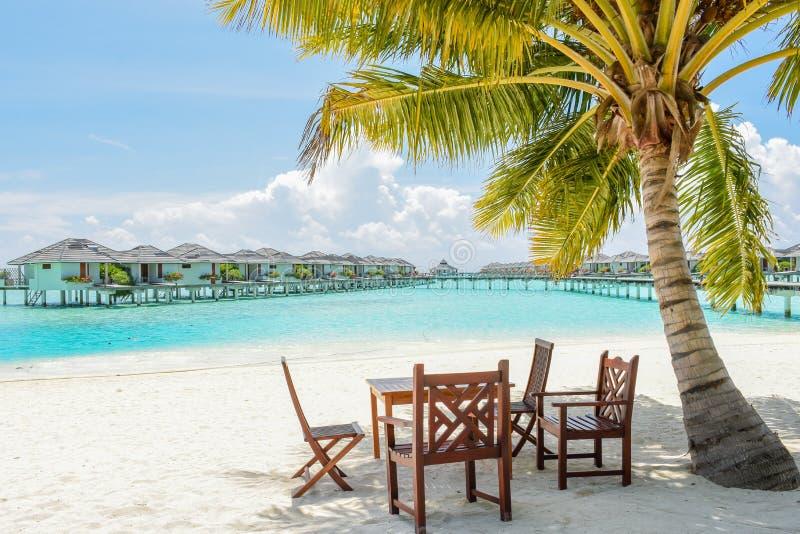 Tropische het dineren plaats onder de palm bij het strand royalty-vrije stock afbeelding
