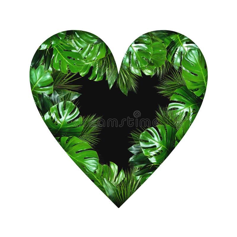 Tropische het hartvorm van installatiebladeren met leeg zwart centrum op witte achtergrond royalty-vrije stock afbeelding