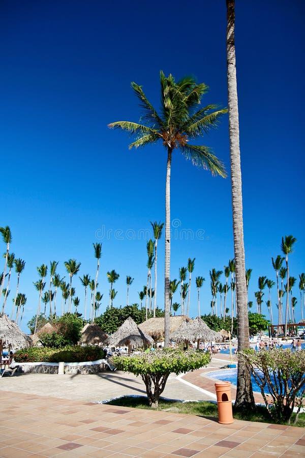 Tropische het hoteltoevlucht van de luxe stock fotografie