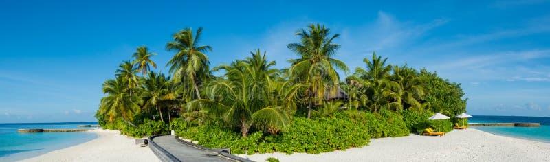 Tropische het panoramamening van het eilandstrand met palmen in de Maldiven stock afbeeldingen
