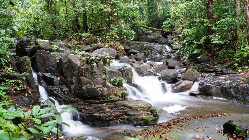 Tropische het regenwoudwaterval van Borneo stock foto's