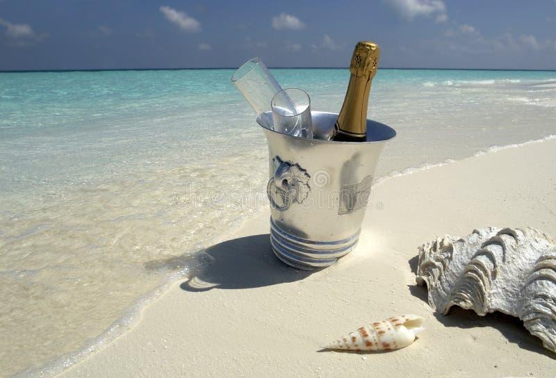 Tropische het strandtoevlucht van de luxe in de Maldiven royalty-vrije stock afbeelding