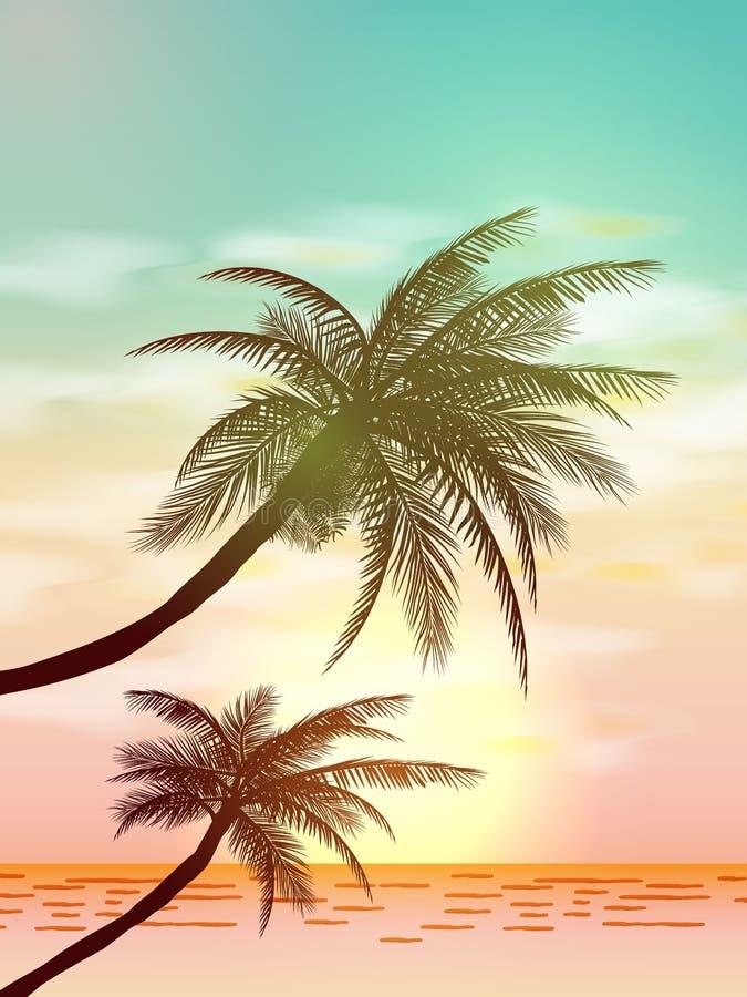 Tropische Hintergründe des Sommers mit Palmen, Himmel und Sonnenuntergang Sommerplakatflieger-Einladungskarte sommerzeit Abbildun lizenzfreie abbildung