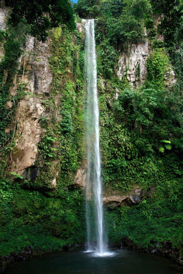 Tropische hoge waterval stock afbeelding