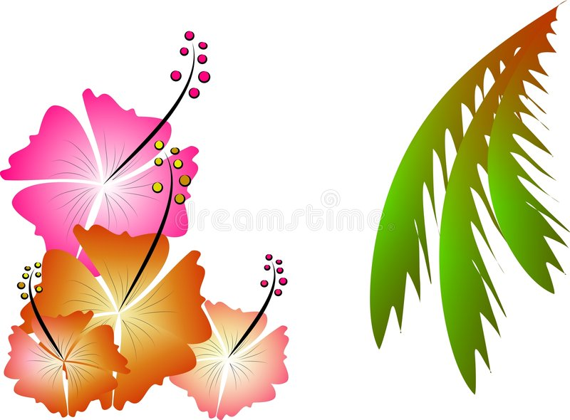 Tropische illustratie vector illustratie