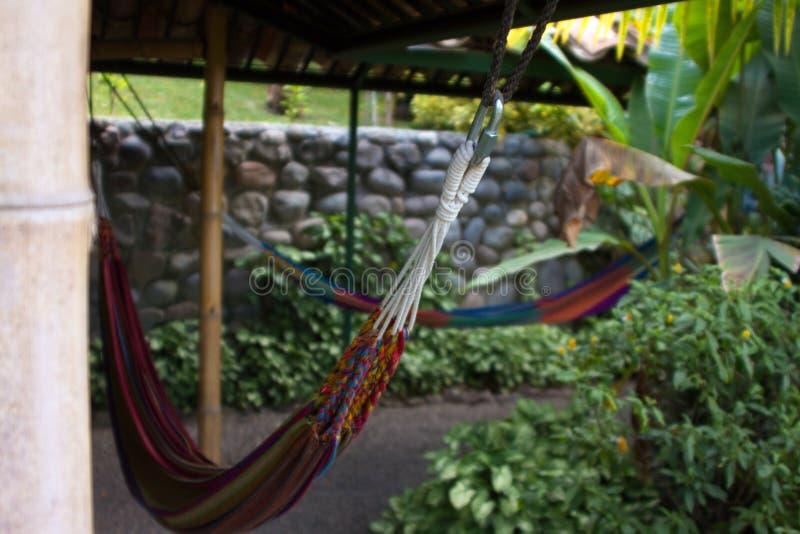 Tropische Insel-Hängematte stockfotos