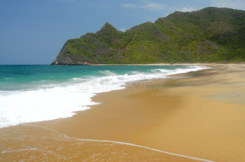 Tropische karibische Insel lizenzfreie stockbilder