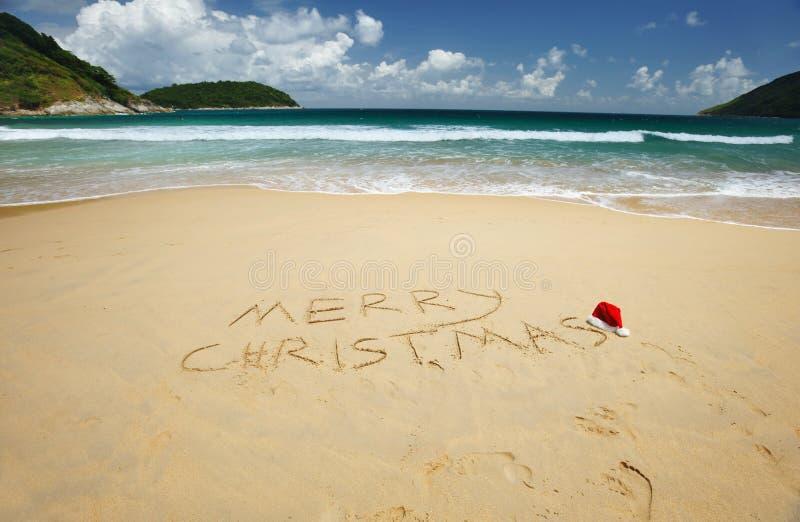 Tropische Kerstmis royalty-vrije stock foto