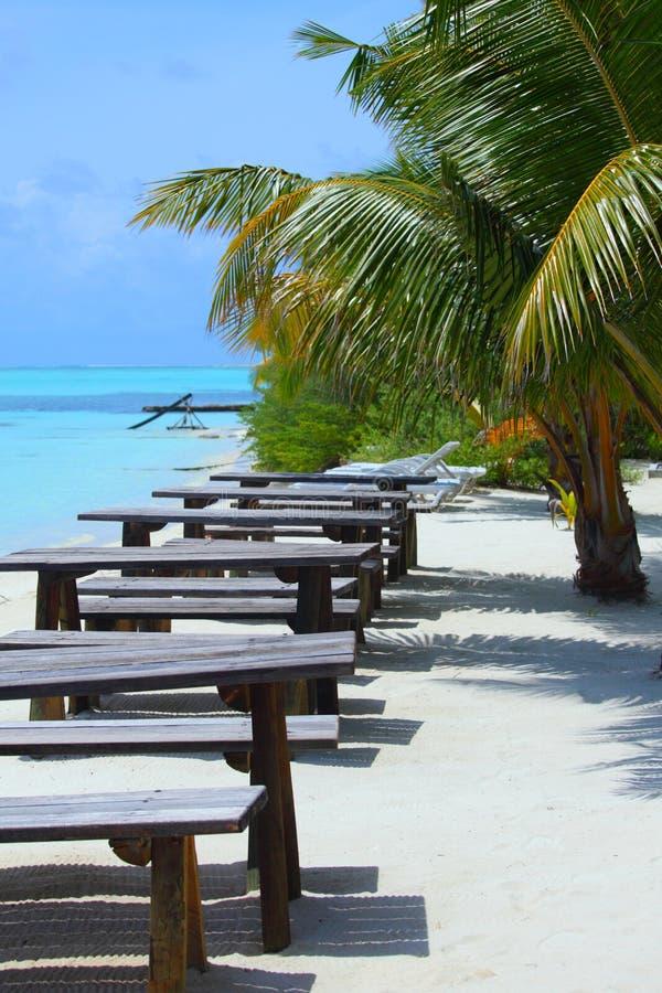 Tropische koffie stock afbeelding