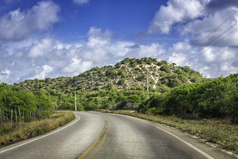 Tropische Kurvenstraße nahe Geburts-, Brasilien lizenzfreie stockbilder