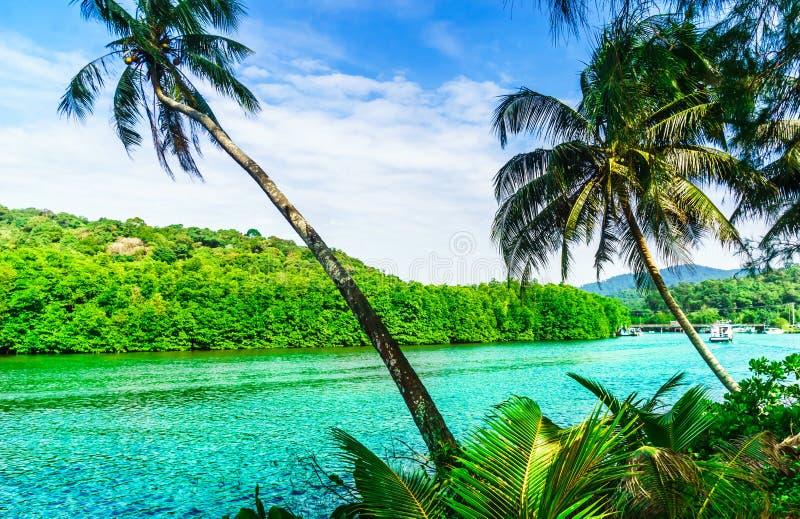 Tropische Lagune im Dschungel auf Koh Kood-Insel - Thailand lizenzfreie stockfotos