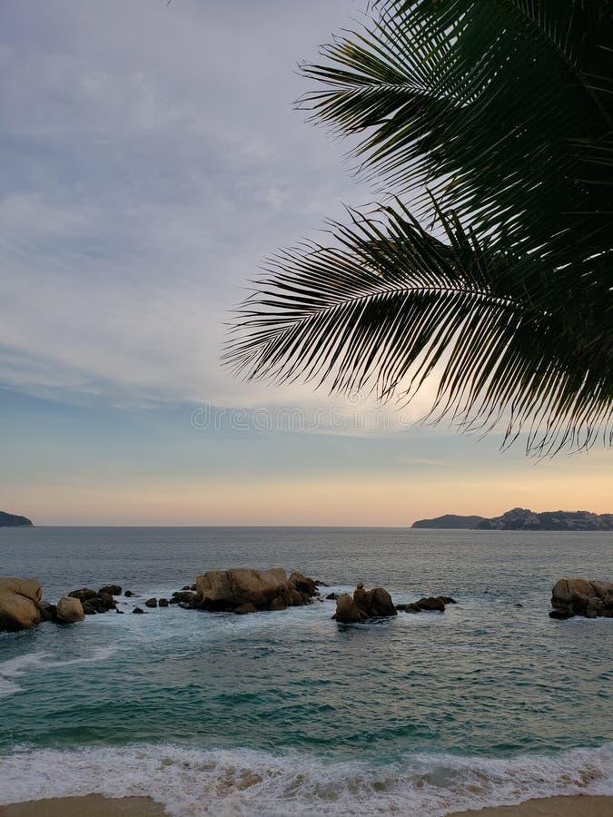 Tropische Landschaft in der Hauptbucht von Acapulco, Mexiko während des Sonnenuntergangs lizenzfreie stockfotografie