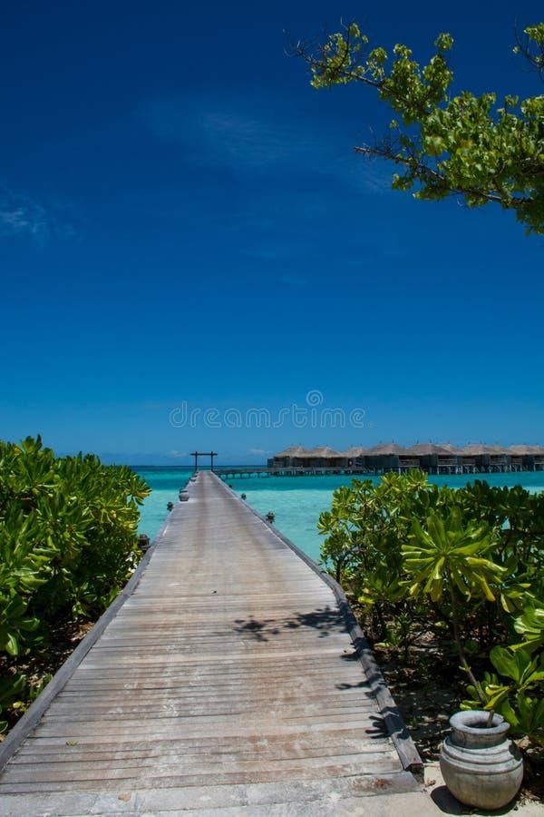 Tropische Landschaft mit Holzbrücke- und Wasserlandhäusern bei Malediven lizenzfreie stockfotografie