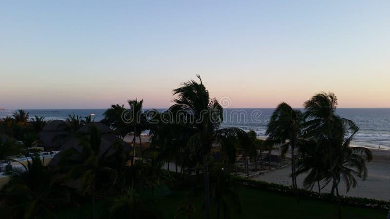 tropische Landschaft mit Schattenbild von Palmen während des Sonnenuntergangs lizenzfreie stockfotografie