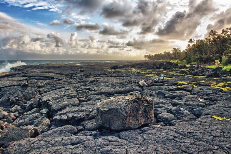 Tropische Lavastrand- und -palmen lizenzfreie stockfotografie