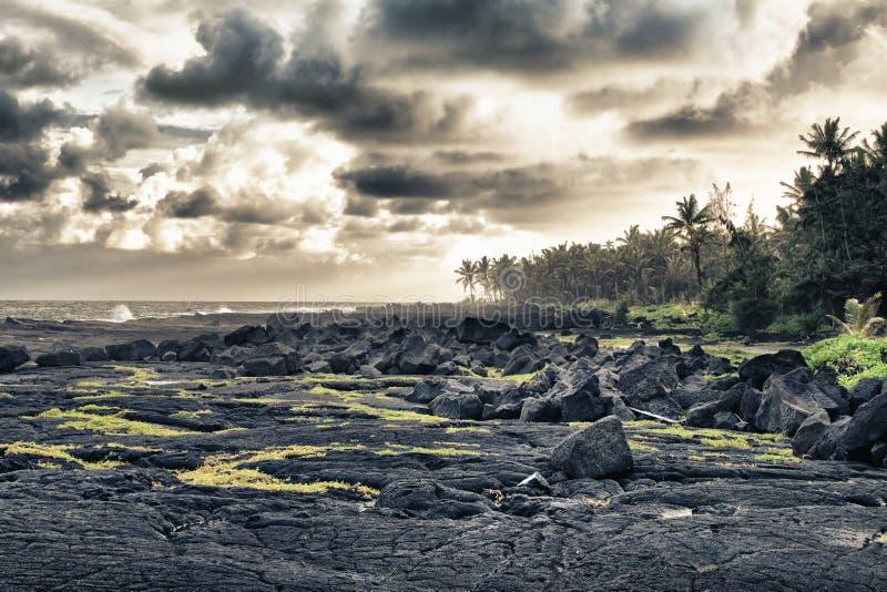Tropische Lavastrand- und -palmen lizenzfreies stockfoto