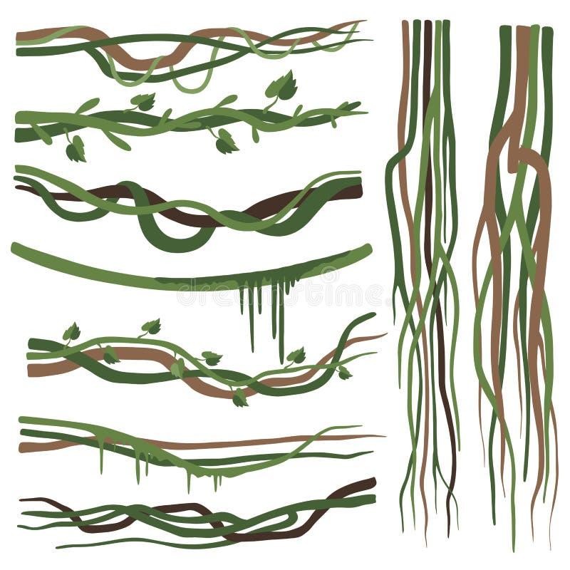 Tropische Liana Branches, Stämme, Reben stellte, Dschungel-Betriebsdekorative Elemente, Regenwald Flora Vector Illustration ein stock abbildung