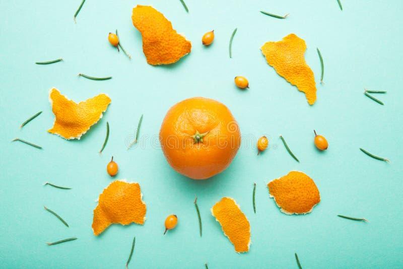 Tropische mandarin met een schil in de vorm van een cirkel, duindoorn en pijnboomnaalden royalty-vrije stock afbeeldingen