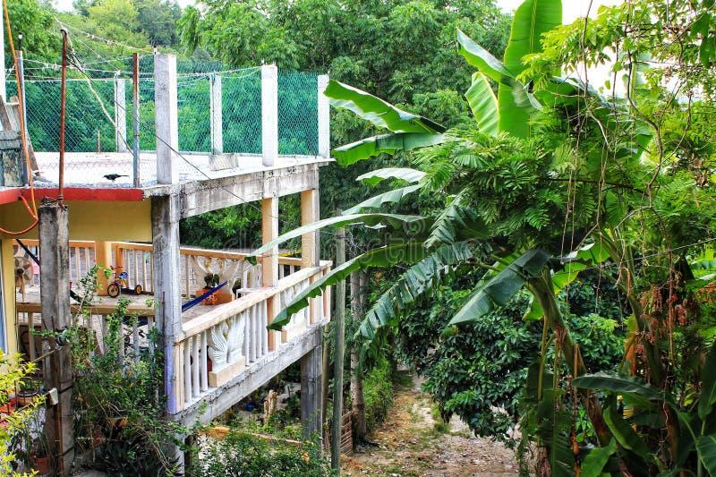 Tropische mexikanische Szene lizenzfreies stockbild