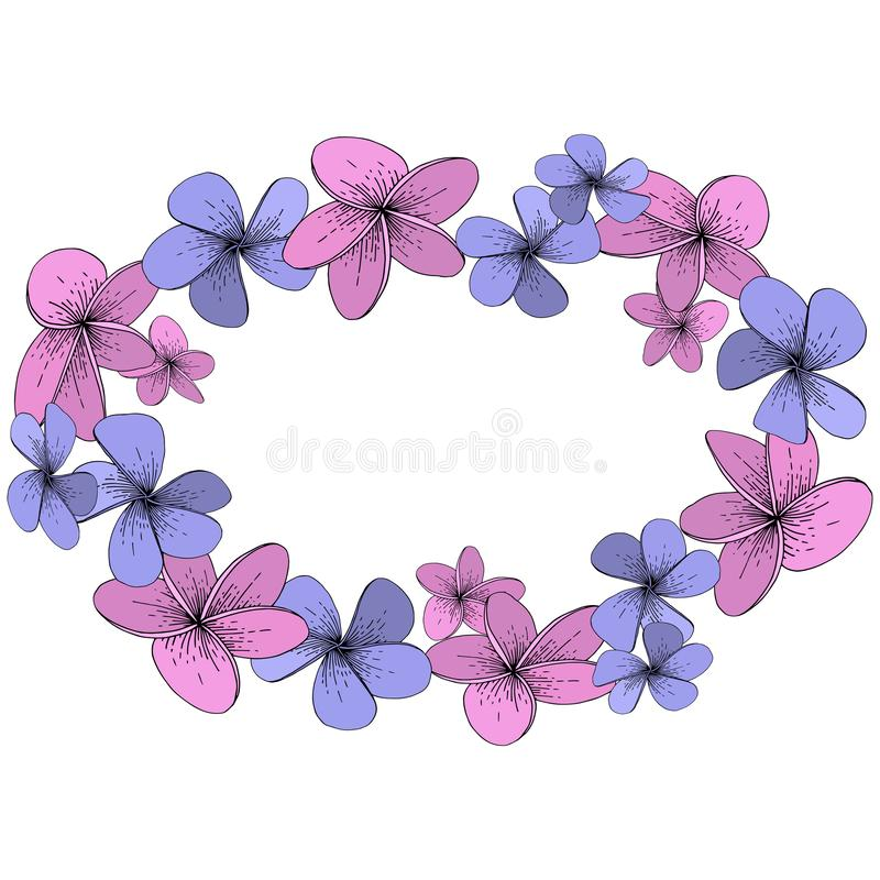 Tropische mit Blumenblumen des Vektor-Hibiscus Gravierte Tintenkunst auf weißem Hintergrund Feldgrenzverzierungsquadrat vektor abbildung
